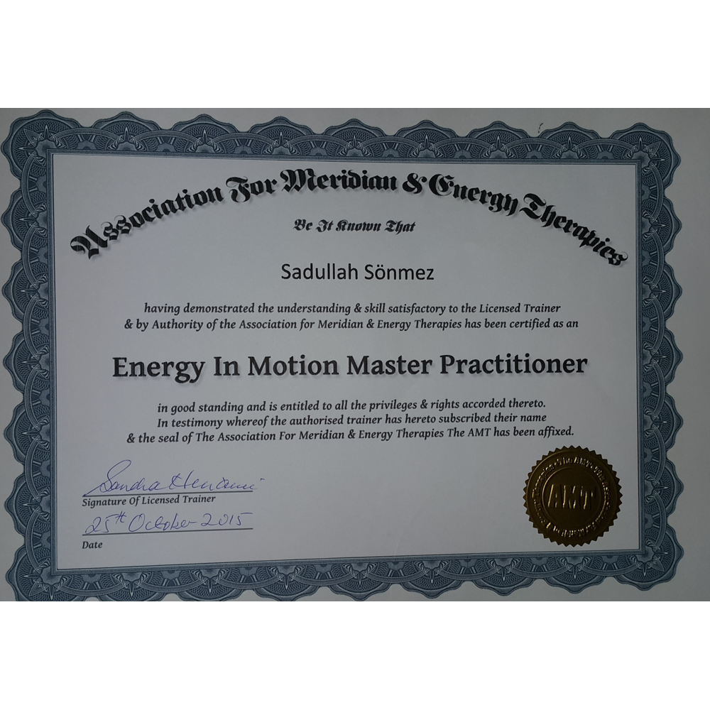 ENERGY IN MOTION MASTER PRACTITIONER